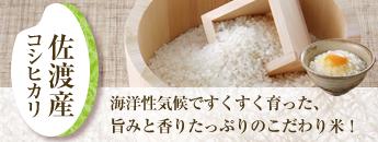 海洋性気候ですくすく育った、旨みと香りたっぷりのこだわり米!佐渡産コシヒカリ