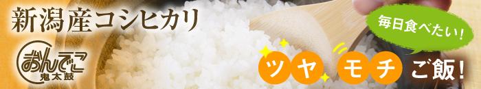 毎日食べたい!ツヤ モチご飯!新潟産コシヒカリ