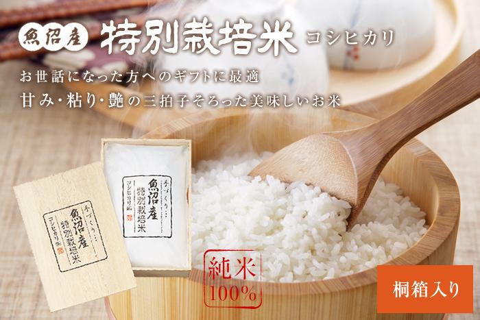 謹製 桐箱入魚沼産コシヒカリ特別栽培米3kg(3kg×1袋)