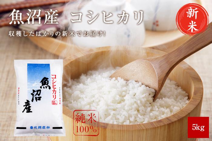 新米 魚沼産コシヒカリ5kg(5kg×1袋)