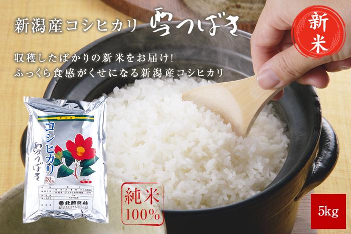 新米 新潟産コシヒカリ 雪つばき5kg(5kg×1袋)