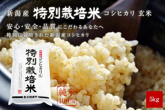 新潟産コシヒカリ 特別栽培米 玄米5kg(5kg×1袋)
